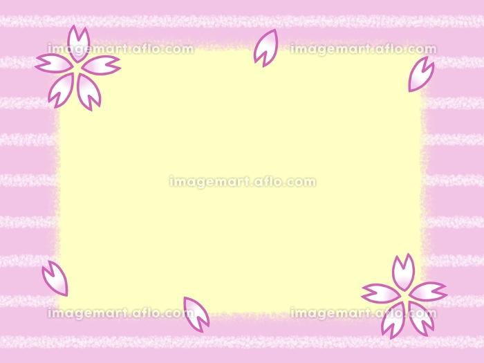 黄色の背景に、ボーダー柄のピンク色の枠と桜の花びらの販売画像