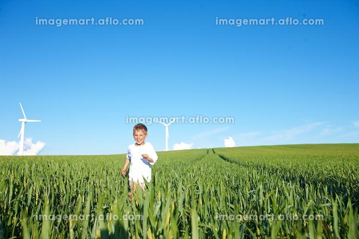 草原を走る男の子の販売画像