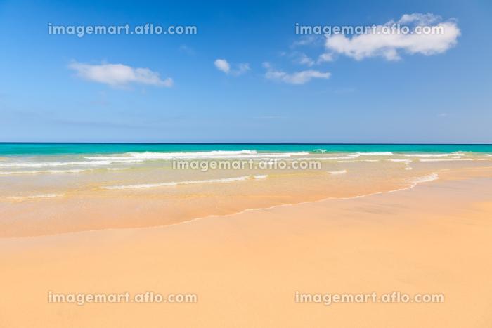 フエルテベントゥーラ島 旅行 地平線の販売画像