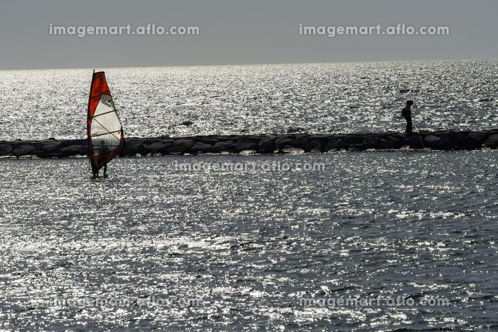 逆光の海にウインドーサーフィンが浮かぶの販売画像
