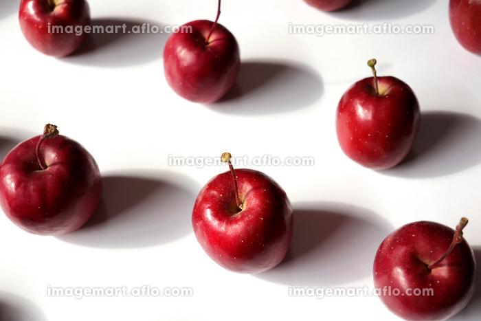 白い紙の上に整列した姫リンゴ 3の販売画像