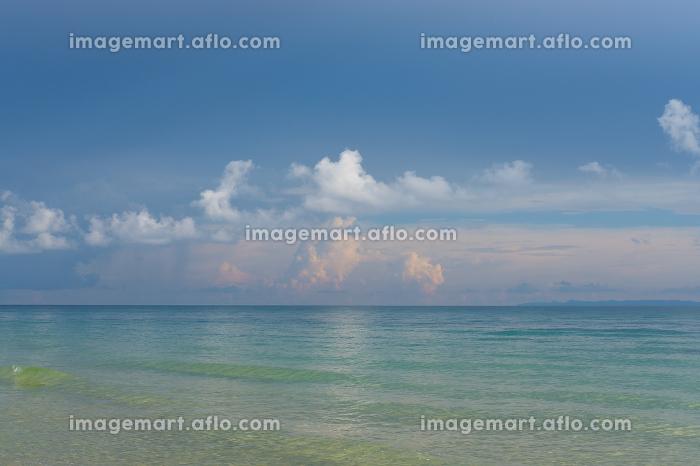 Tropical beach.の販売画像