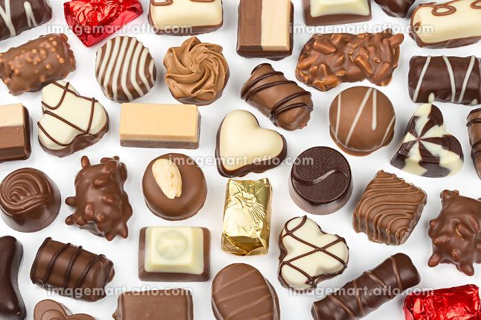 chocolateの販売画像