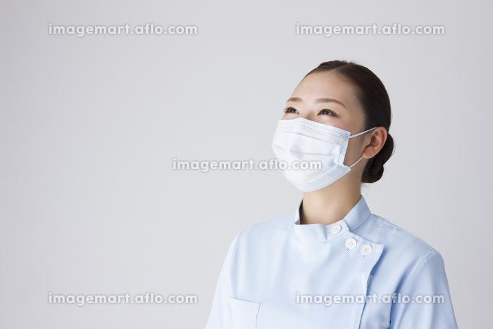 歯科助手の販売画像