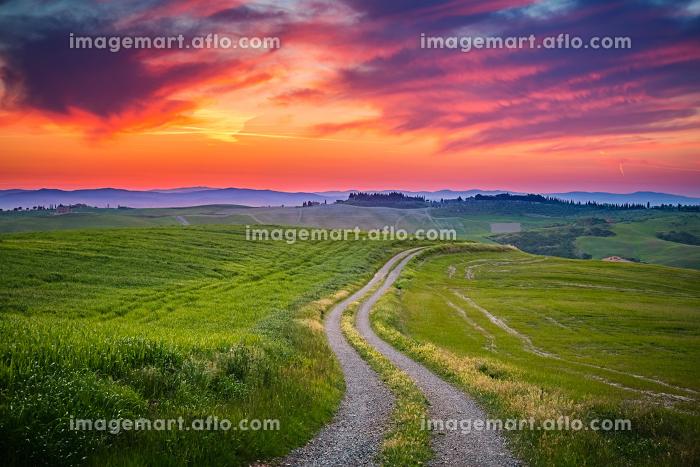 Tuscany sunsetの販売画像
