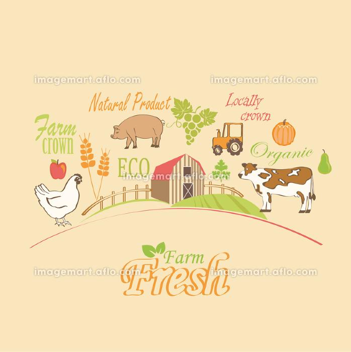 Organic and farm, vector concept.の販売画像