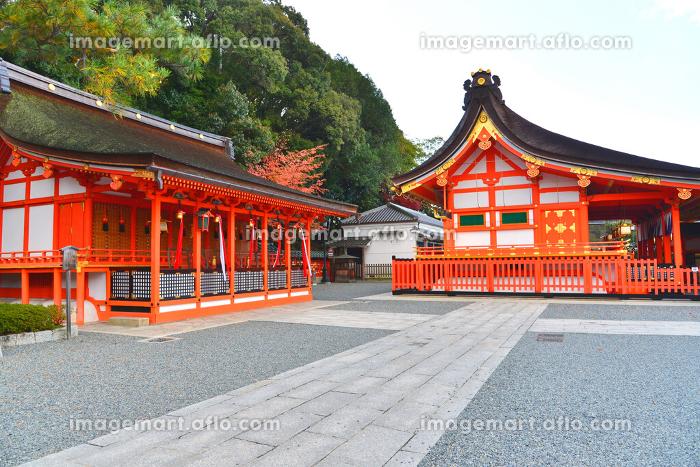 京都 伏見稲荷神社の販売画像
