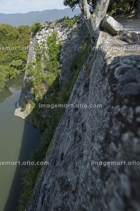 藤堂高虎の上野城跡に残る日本一高い石垣の販売画像