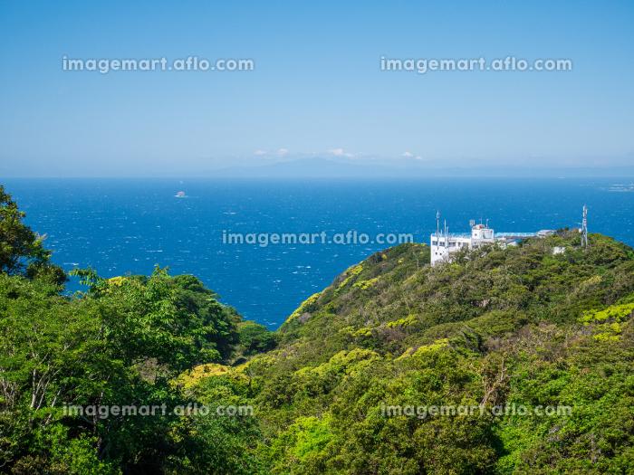 初夏の鋸山山頂からの風景 5月の販売画像