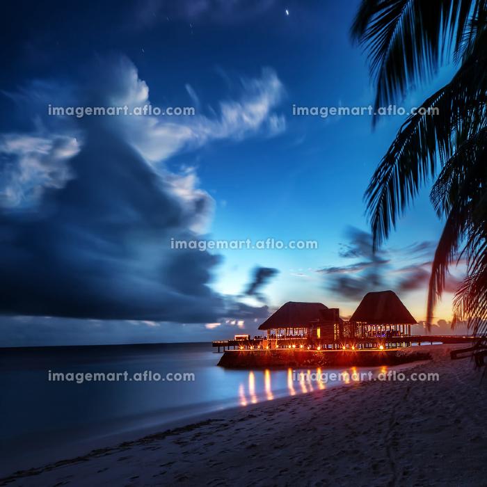 Paradise beach at nightの販売画像