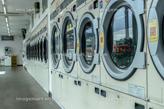 ドラム式洗濯乾燥機が並ぶコインランドリーの販売画像