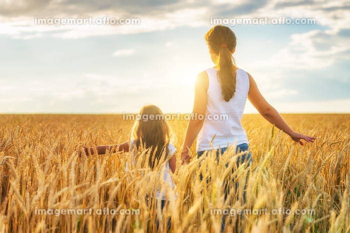 Young woman and her daughter walking on golden wheat field at sunny day.の販売画像