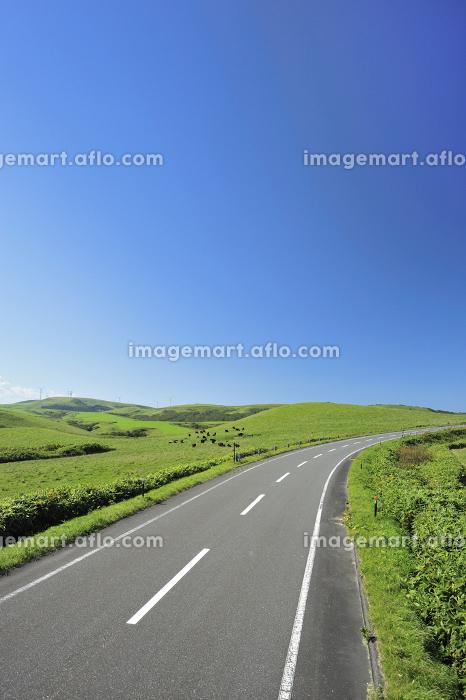 宗谷丘陵の道の販売画像
