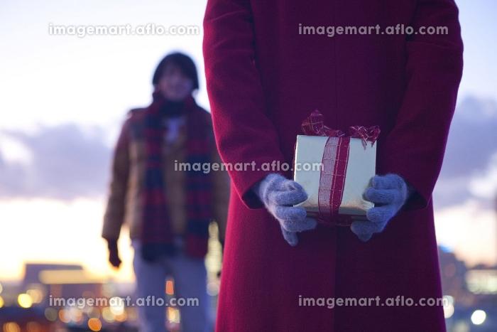 男性にクリスマスプレゼントを渡そうとする女性の後ろ姿の販売画像