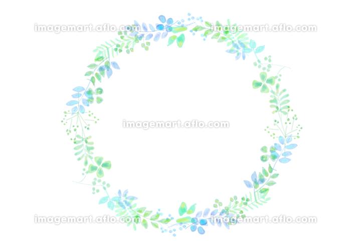 植物イメージの飾り罫の販売画像