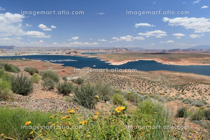 レイクパウエル グランドサークル アリゾナ州 アメリカ合衆国の販売画像