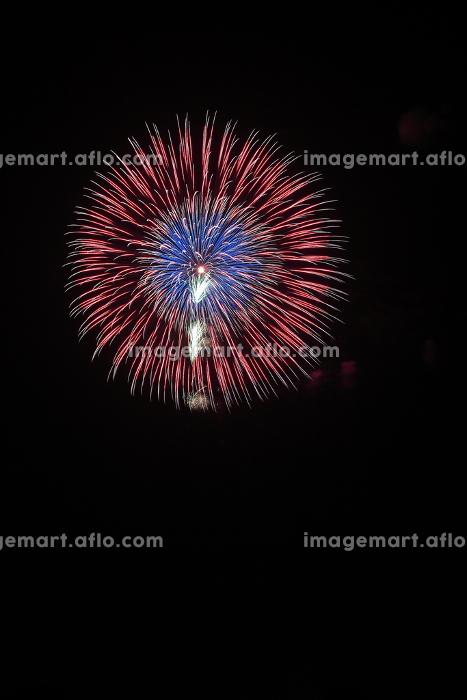 大曲の花火。全国花火競技大会。秋田県で開催される日本一の花火大会。の販売画像