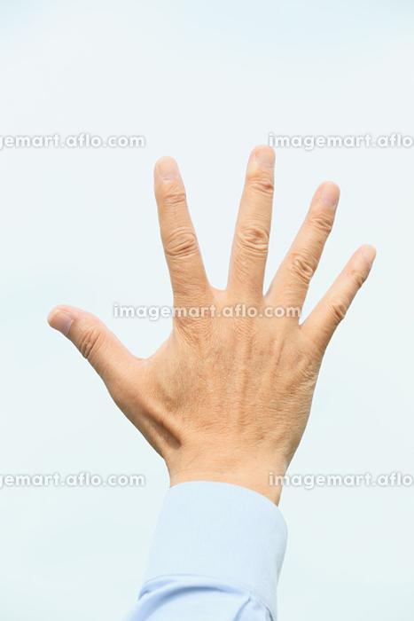 シニアの日本人男性の手の販売画像