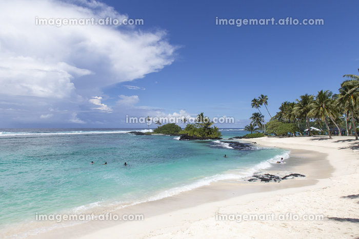 Three people swimming in blue waters at tropical sandy beachの販売画像