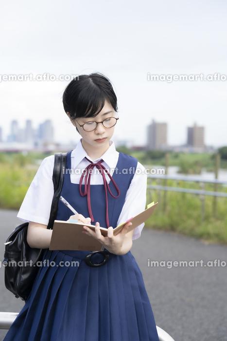 勉強する女子高生の販売画像