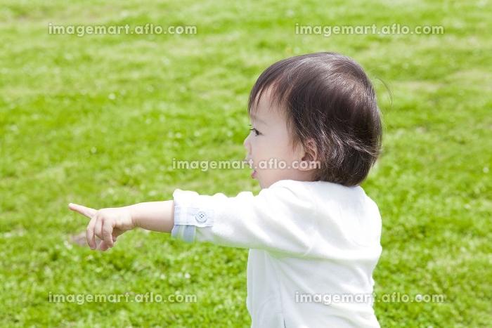 公園で遊ぶ男の子の販売画像