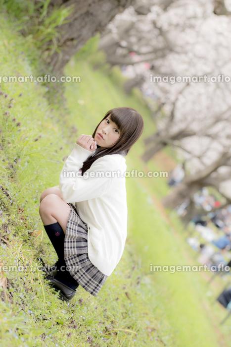 桜の木の下でしゃがみ込む女子高生
