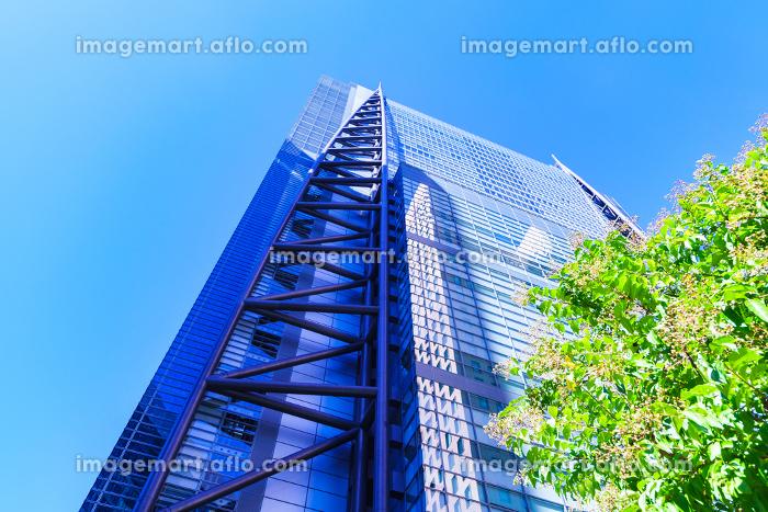 日本テレビタワーの外観 【東京都の都市風景】の販売画像