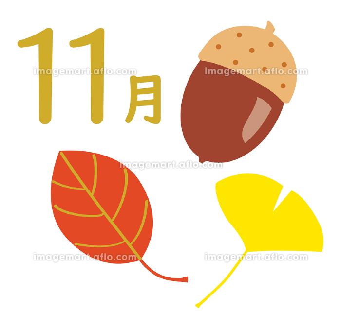 カレンダー季節のイラストアイコン 11月の販売画像