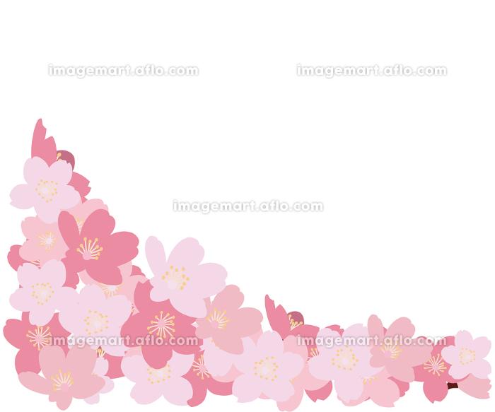 イラスト素材 桜 さくら サクラ 花門 花びら 木 ベクターの販売画像