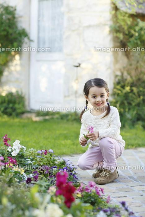花がいっぱいの庭で遊ぶ女の子の販売画像