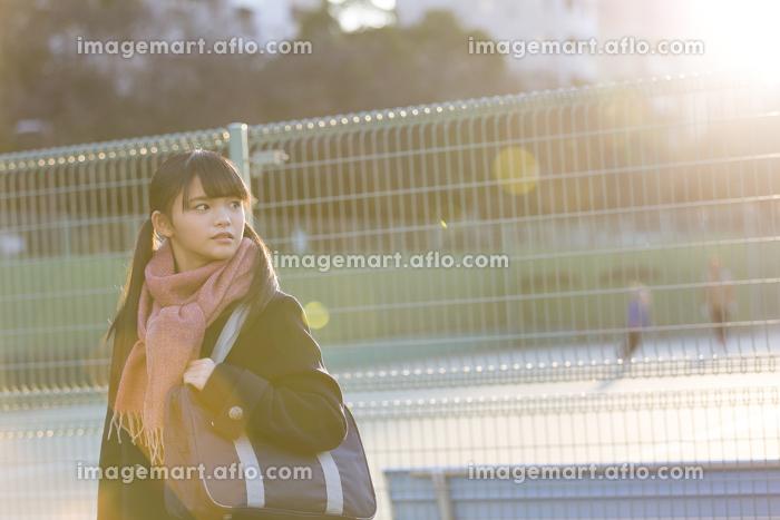 フェンスの前を立つ女子校生の販売画像