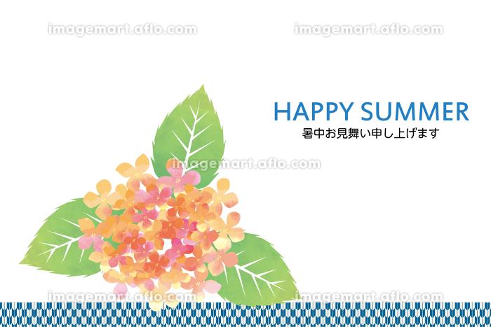暑中見舞い用デザインテンプレート 夏のイメージの紫陽花のイラストの販売画像