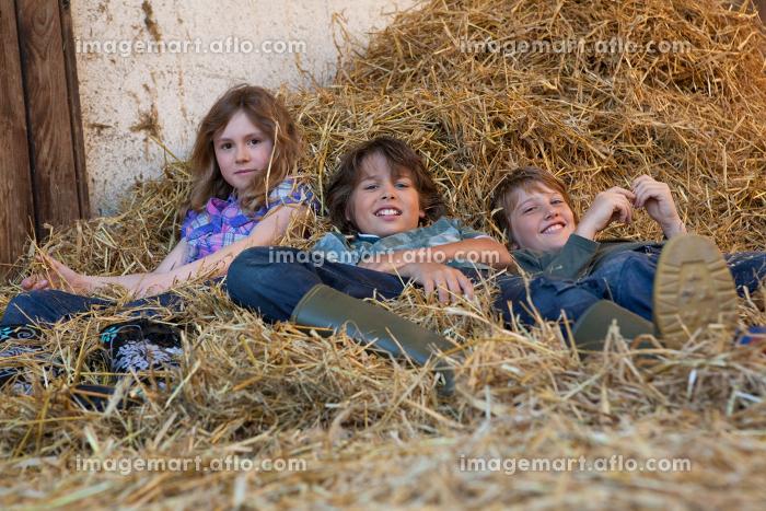 Three kids resting in hayの販売画像
