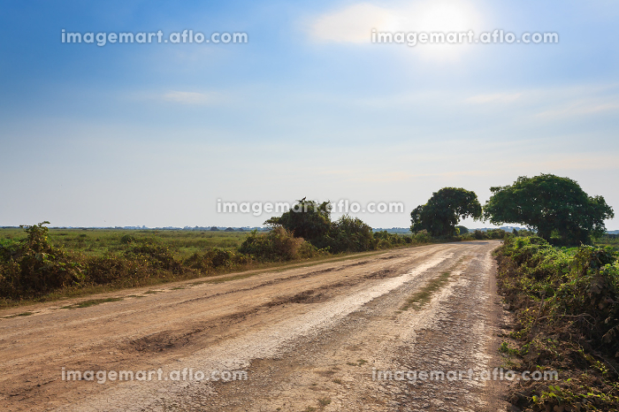 Brazilian dirt road in perspective