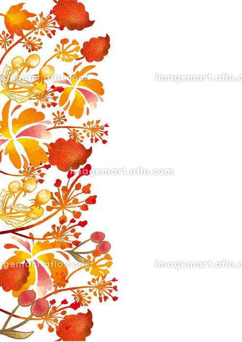 北欧風の紅葉の背景素材 もみじ かえで 草 葉 植物 枯れ葉 落ち葉の販売画像