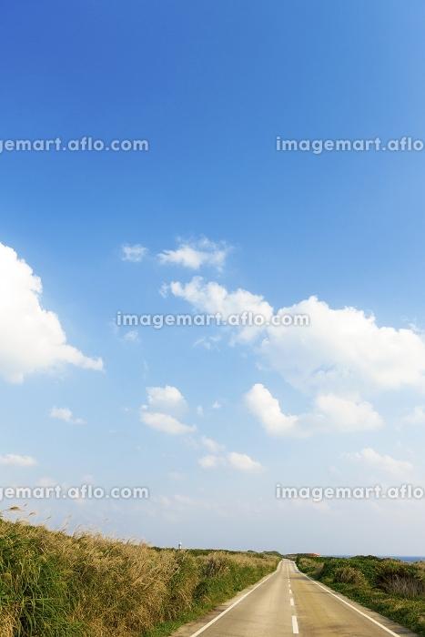 道路と青空 宮古島の販売画像