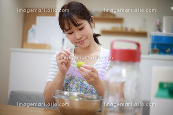 梅酒を作る女性の販売画像