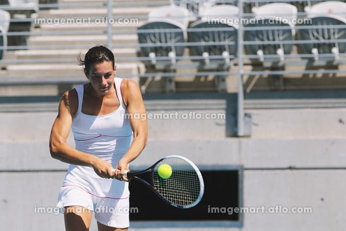 テニスの販売画像