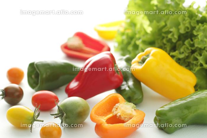 レタスやカラーのピーマンや色のついトマトの集合イメージ写真の販売画像