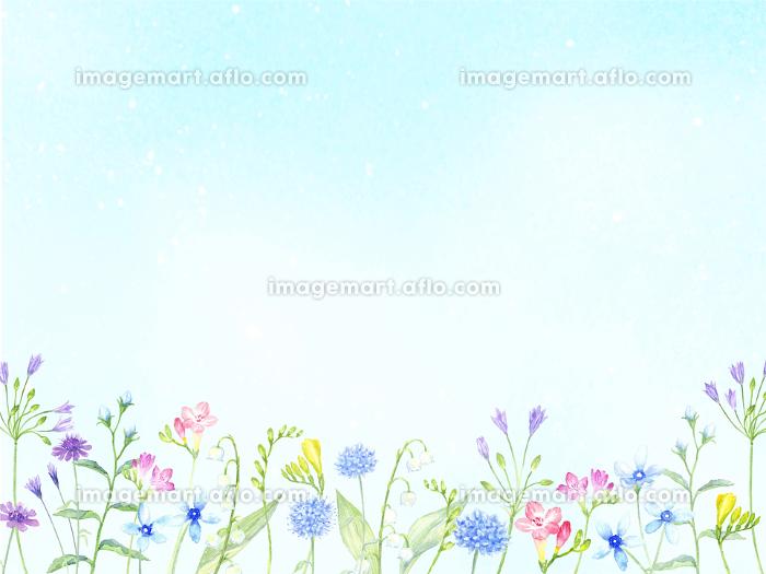 水彩で描く花畑の販売画像