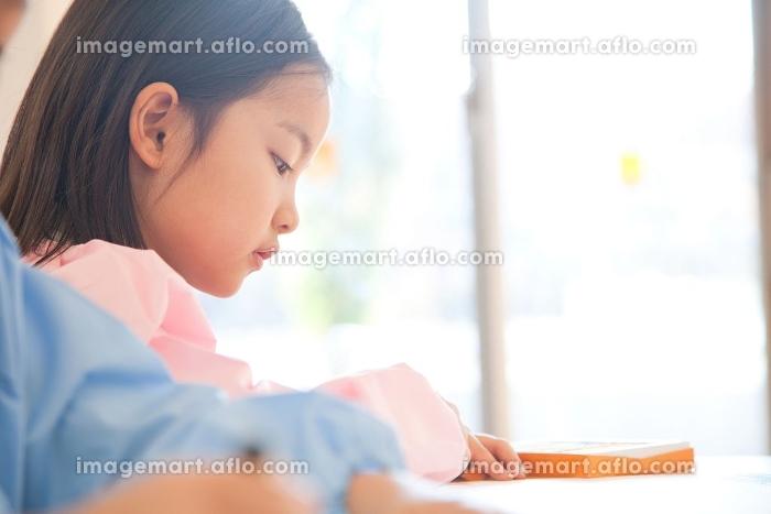 お絵描きを楽しむ幼稚園女児と見守る幼稚園教諭の販売画像