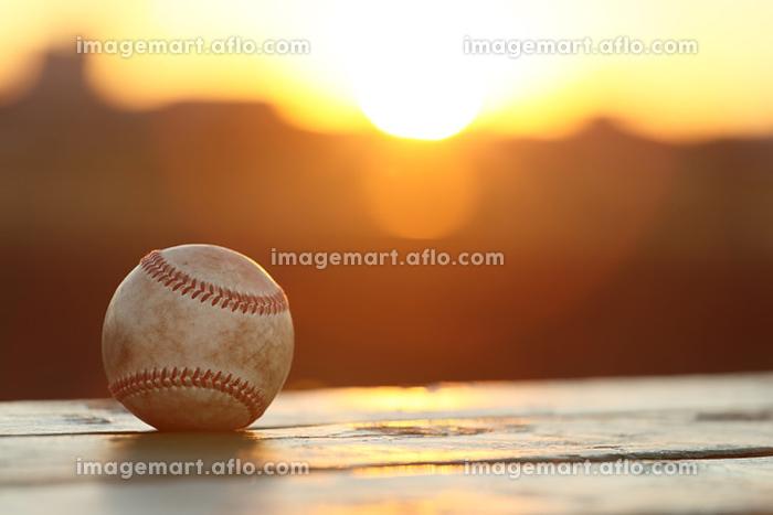 野球のボールの販売画像