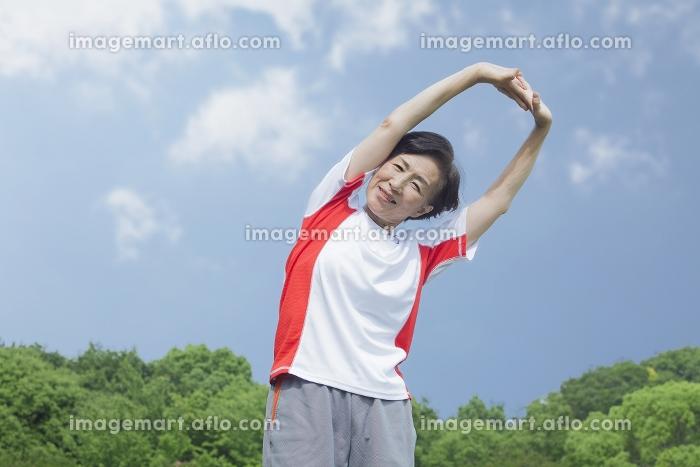 体操をするシニアの女性の販売画像