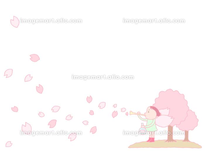 桜の花びらの販売画像