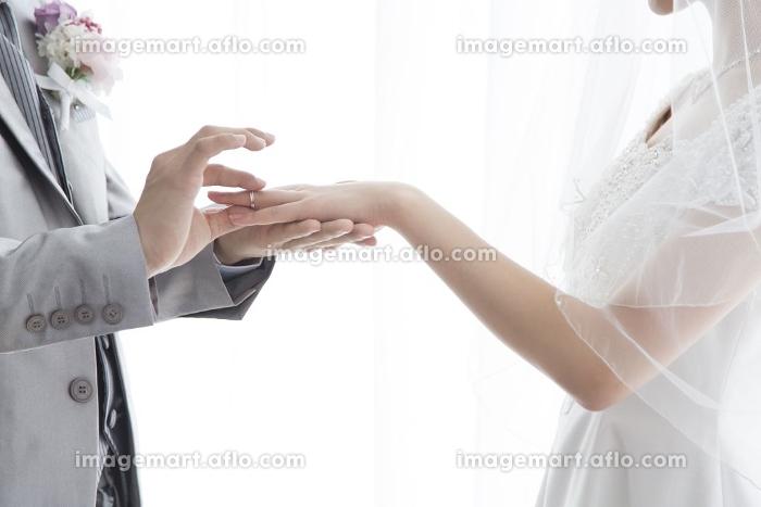 指輪交換する新郎新婦の販売画像