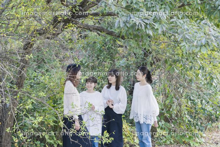 談笑する日本人女性4人の販売画像