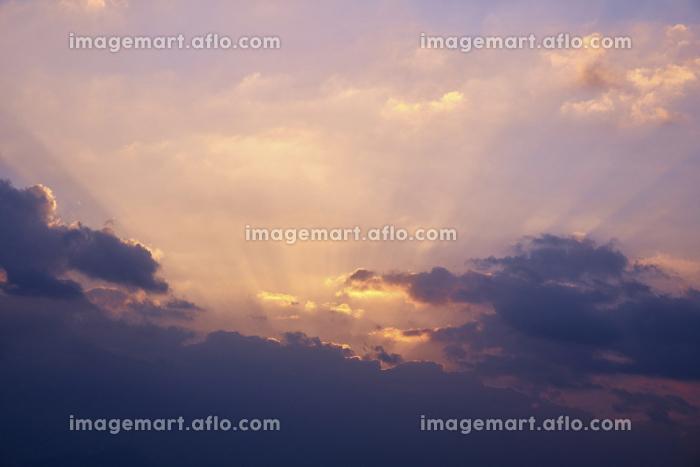 弓ヶ浜からの夜明けの販売画像