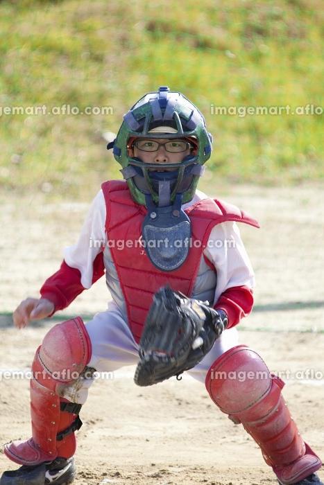 少年野球キャッチャーの販売画像