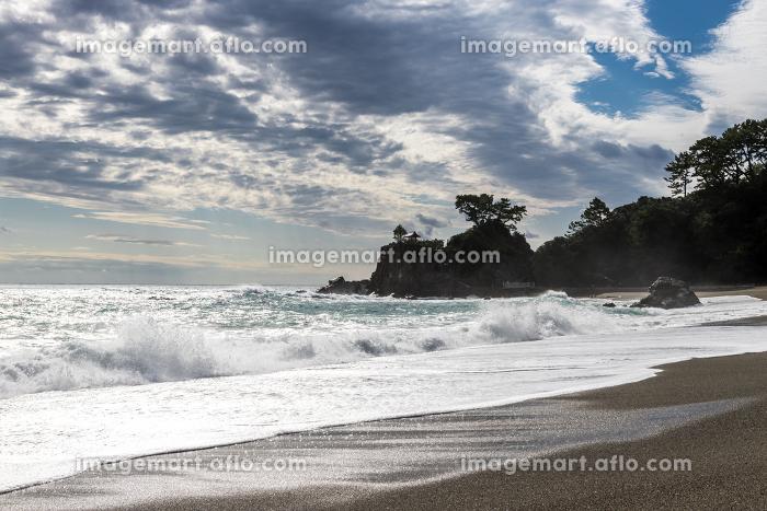 桂浜の風景の販売画像
