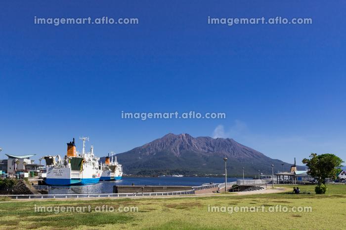 ウォーターフロントパークから見た桜島の風景 鹿児島県鹿児島市の販売画像